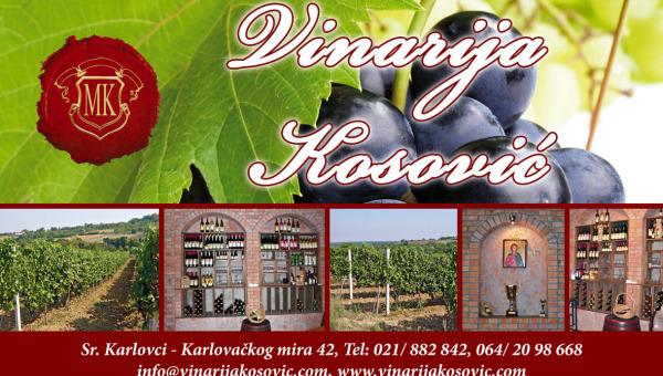Vinarija Kosovic 2
